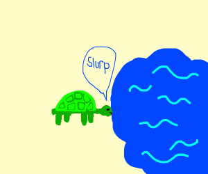 turtle dronk WaTer