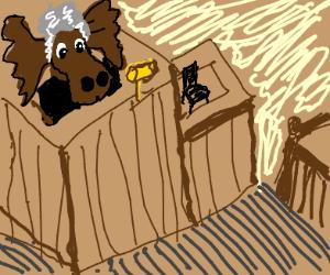 Moose Judge