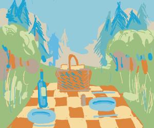 A picnic basket on an open field