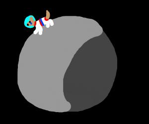 Sad dog on moon