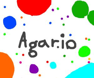 Agar.IO