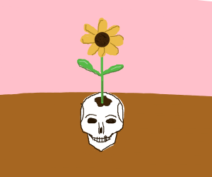 a sunflower growing out of a human skull