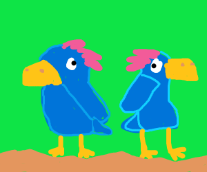 2 Blue Parrots