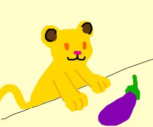 simba gonna make some eggplant Parmesan
