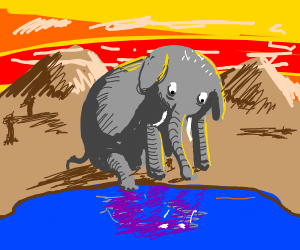 Elephant staring at a pond