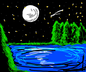 Night by the forest lake.