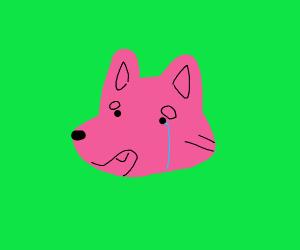Crying doggo unu