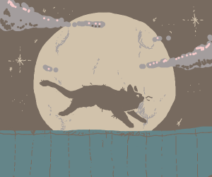 Cat running in front of moon