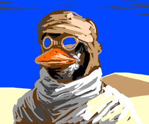 Duckman in desert