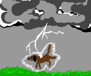 The DOG has been struck by LIGHTNING!!!!!!!!!