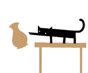 Cat knocks a vase off the table