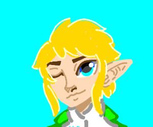 Link Winks