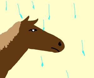 Horse in a Hailstorm