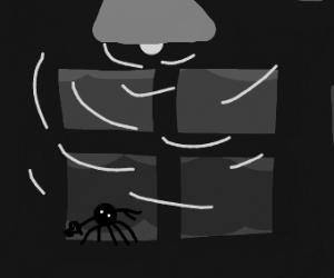 dancing spider in the windowsill