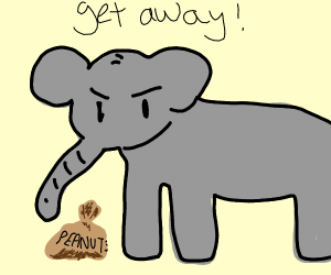 elephant protecting his nuts