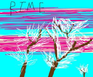 RIME Island