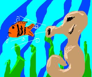 Seahorse eats a fish