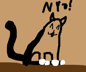 Nya! A kitty meows cutely