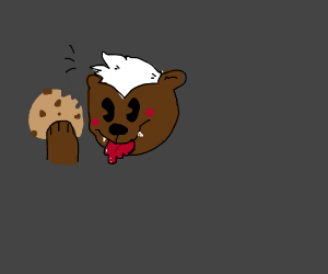 honey badger eating cookies