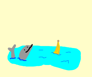 Dolphin in a pond with a bannana
