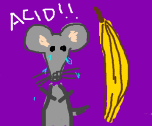 mouse crys acid at bannanna
