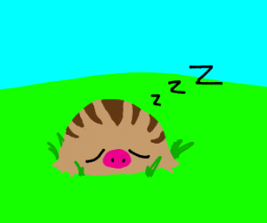 Sleeping swinub