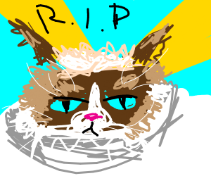 The Death Of Grumpy Cat
