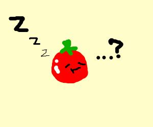 Tomato is bored