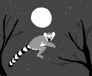 The lemur jumped by the moon