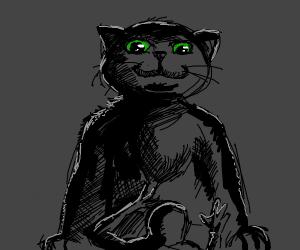 huge cat looks down on puny mortal man