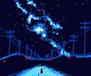 cat watches the starry sky over a road
