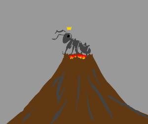 King ant on volcano