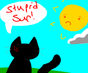 Black cat despises the sun