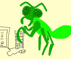 Praying Mantis Programming