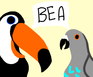 A toucan and bluebellied pigeon screaming bea