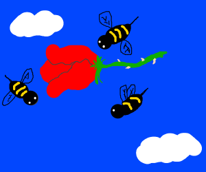 Bee flies around a floating rose