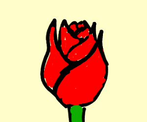 A traditional rose pattern