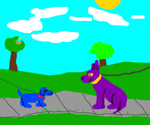 blue and purple dog