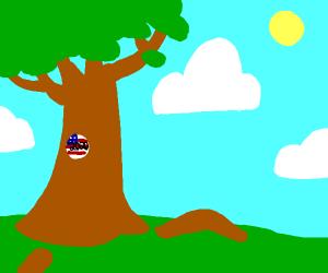 Tree for President 2020
