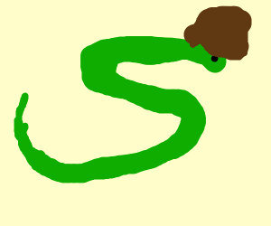 strange snake with a afro
