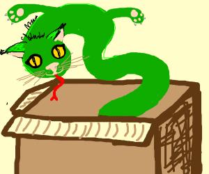 Snake/cat hybrid