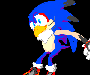 Sonic pretending to be a bird