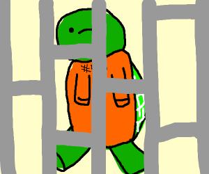 Criminal turtle in prison