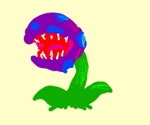 Purple and blue piranha plant