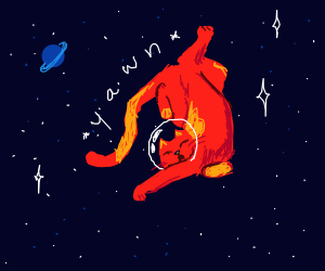 cat is just chillin in space