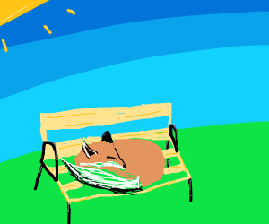 Sleeping fox on a beach