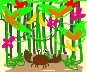 happy brown crab in jungle