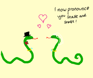snake marriage