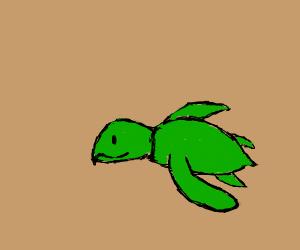 Yep, that's a turtle