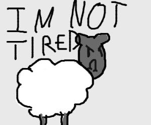 a not sleepy sheep